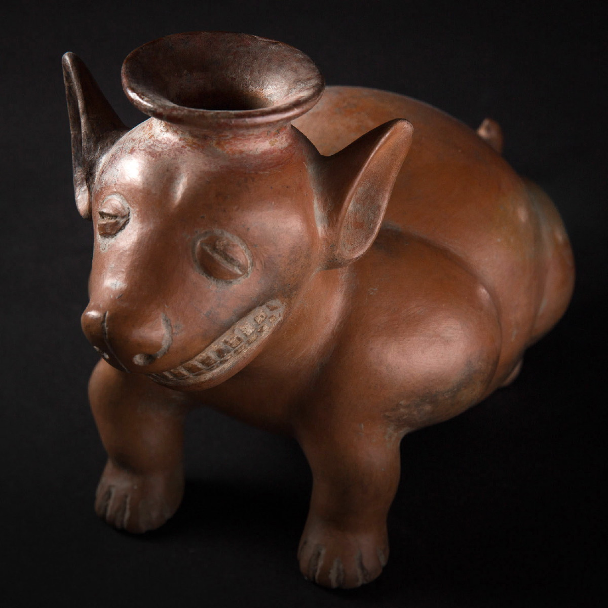 Photo of colima-seated-dog-vessel-mexico-galerie-golconda-archeology