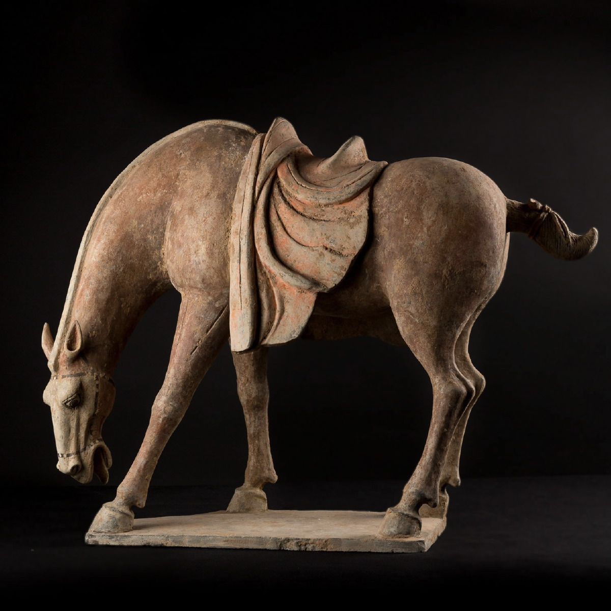 Photo of tang-horse-drinking-terracotta-galerie-golconda-china