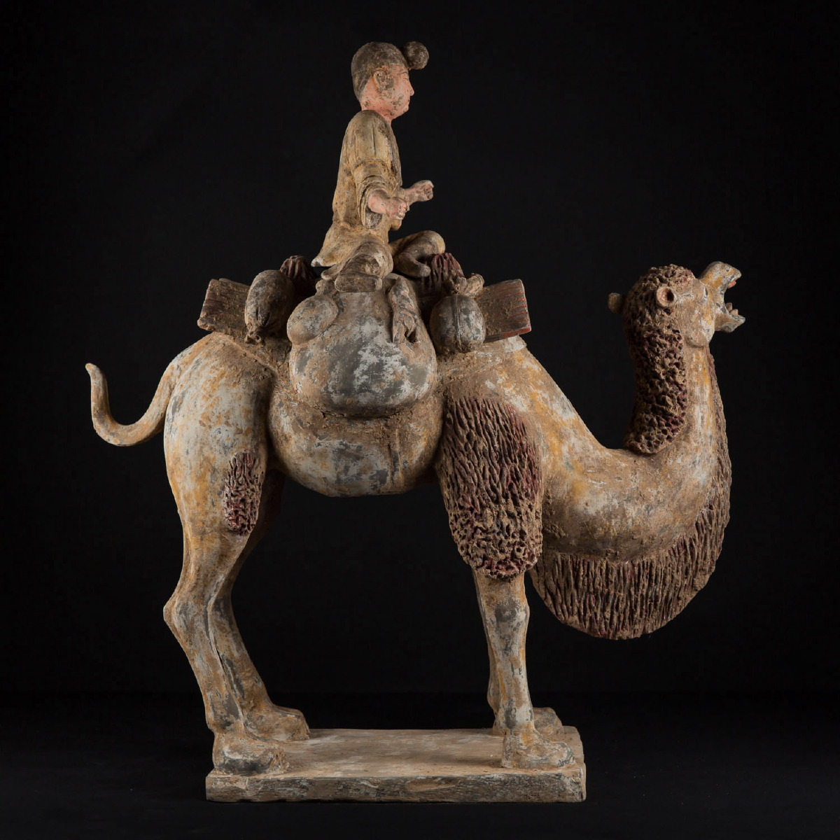 Photo of formidable-camel-tang-china-soddian-museum-quality-galerie-golconda