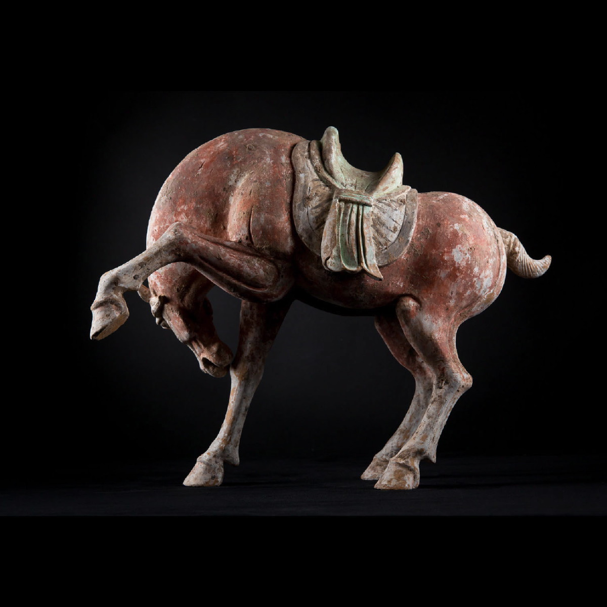 Photo of bucking-horse-tang-dynasty-ancient-art-specialist-oriental-and-asiatic-artefacts-statues-galerie-golconda
