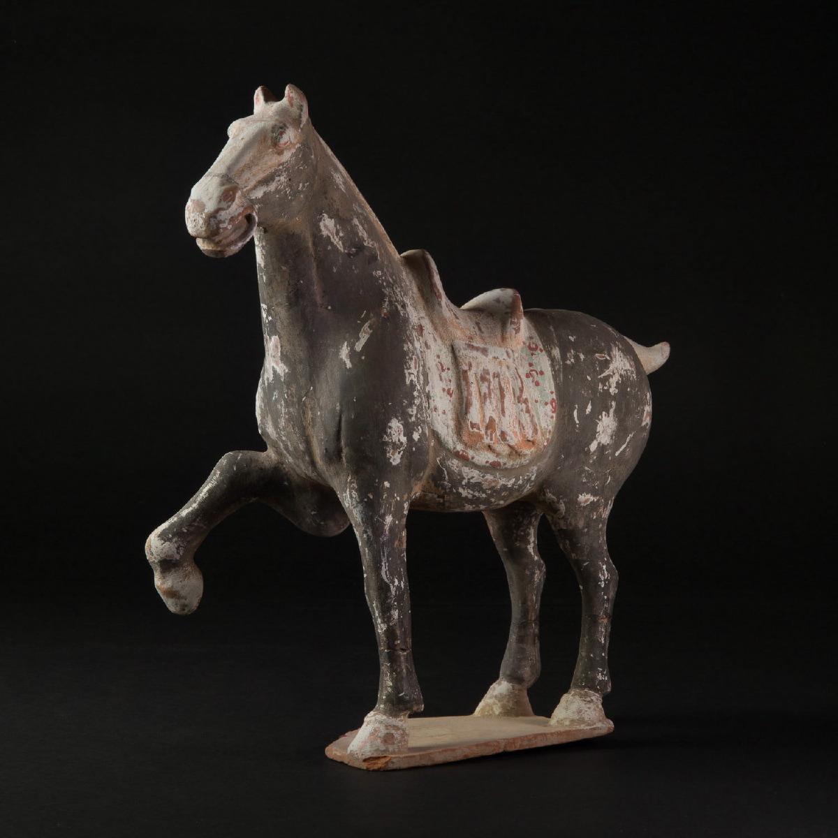 Photo ofTANG PRANCING HORSE