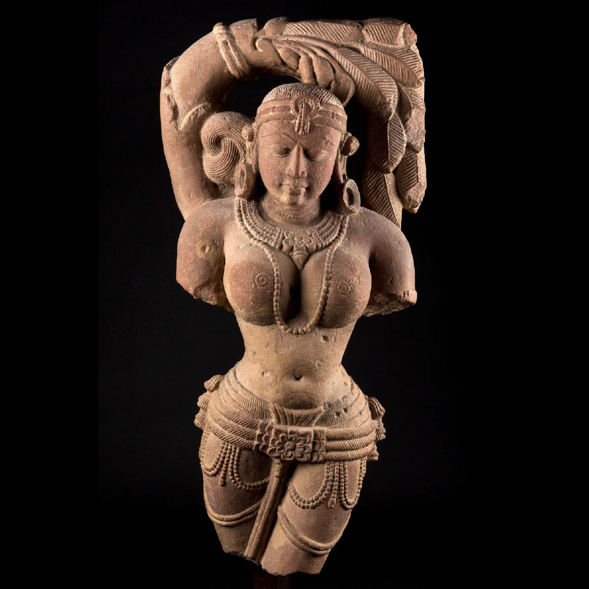 Photo of shalabhanjika-tree-goddess-madhya-pradesh-female-deity-india