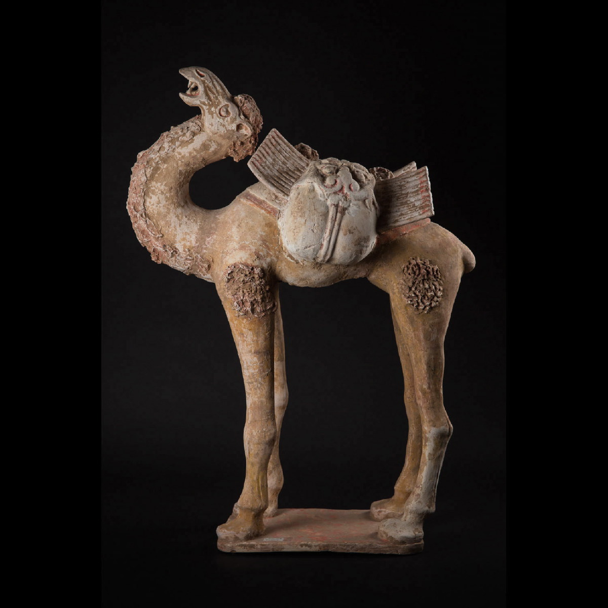 Photo of an-impressive-camel-with-packboard-tang-dynasty-galerie-golocnda