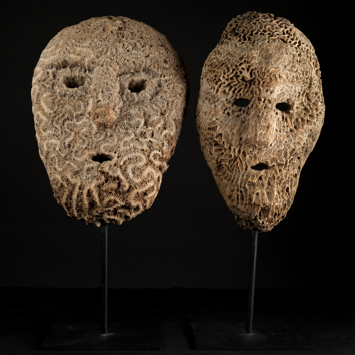 Photo ofANCESTRAL CORAL MASKS FROM TIMOR