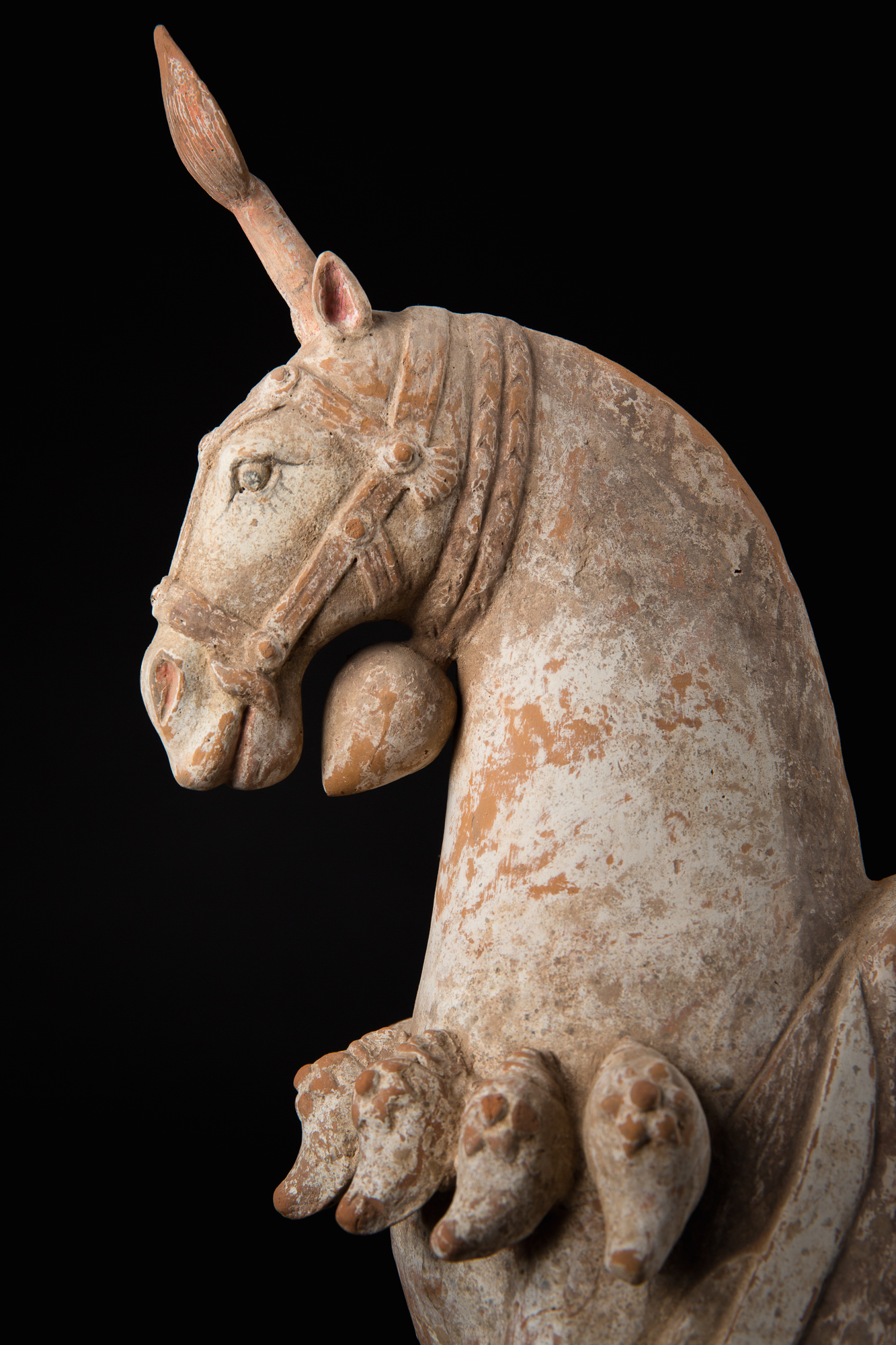 Photo of PARADE HORSE WITH CAPARISON FROM NORTHERN WEI DYNASTIES