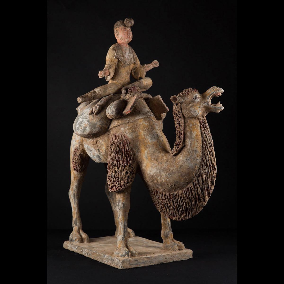 Photo ofOUTSTANDING CAMEL WITH RIDER