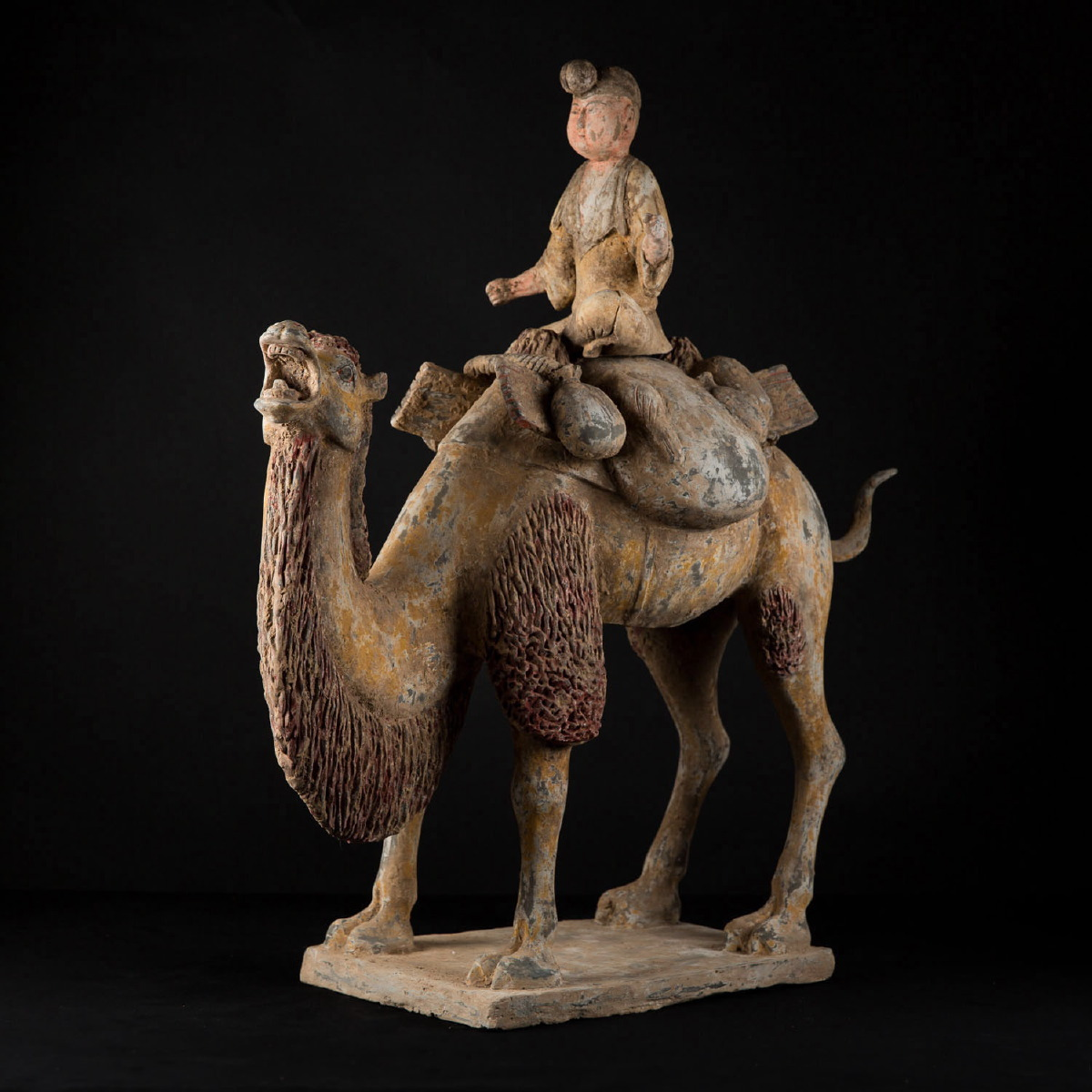 Photo of OUTSTANDING CAMEL WITH RIDER