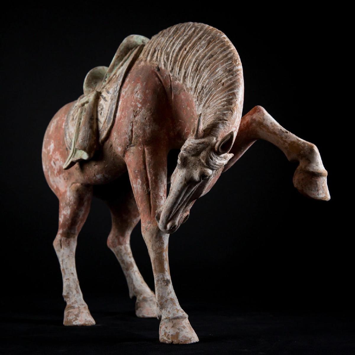 Photo of TANG BUCKING HORSE