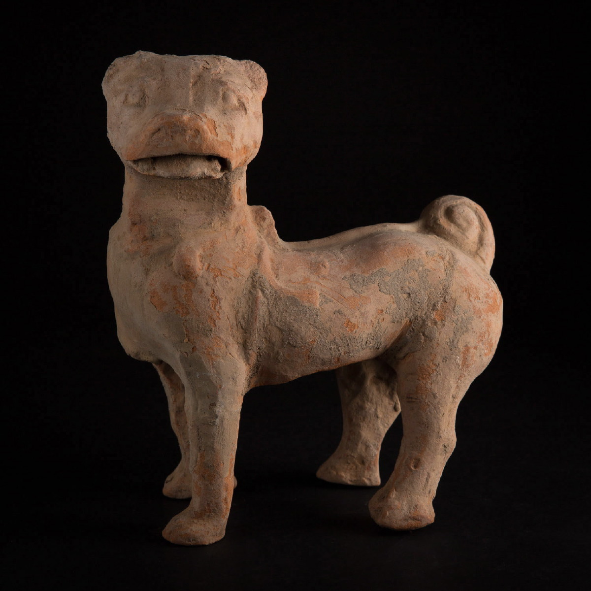 Photo ofHAN FUNERARY POTTERY WATCHDOG SHARPEI
