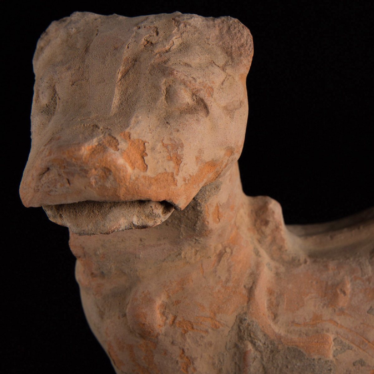 Photo of HAN FUNERARY POTTERY WATCHDOG SHARPEI