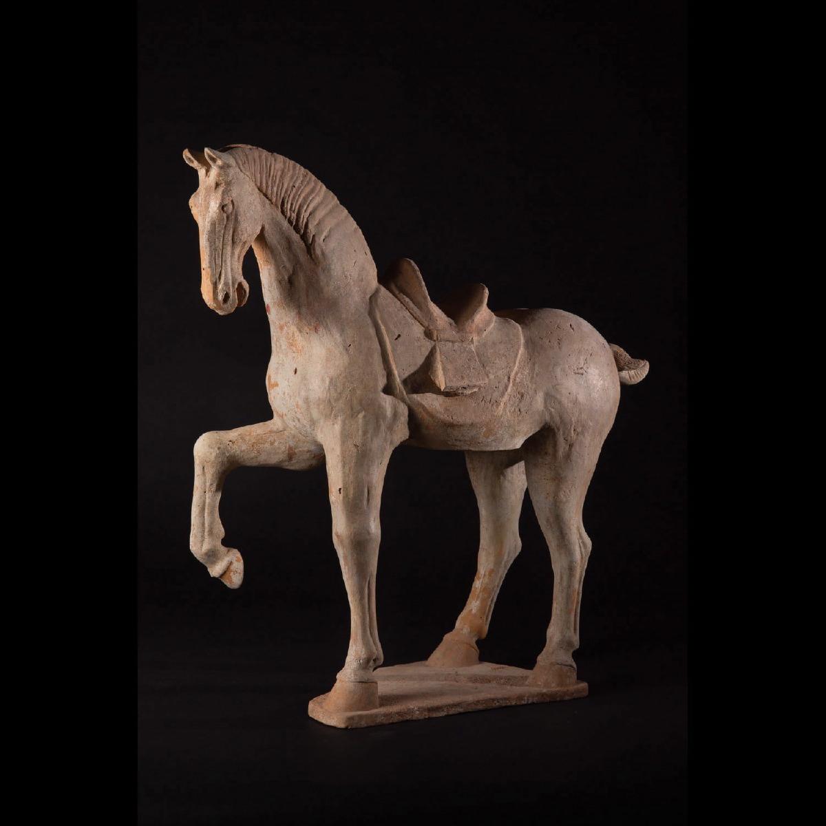 Photo of ELEGANT TANG PRANCING HORSE