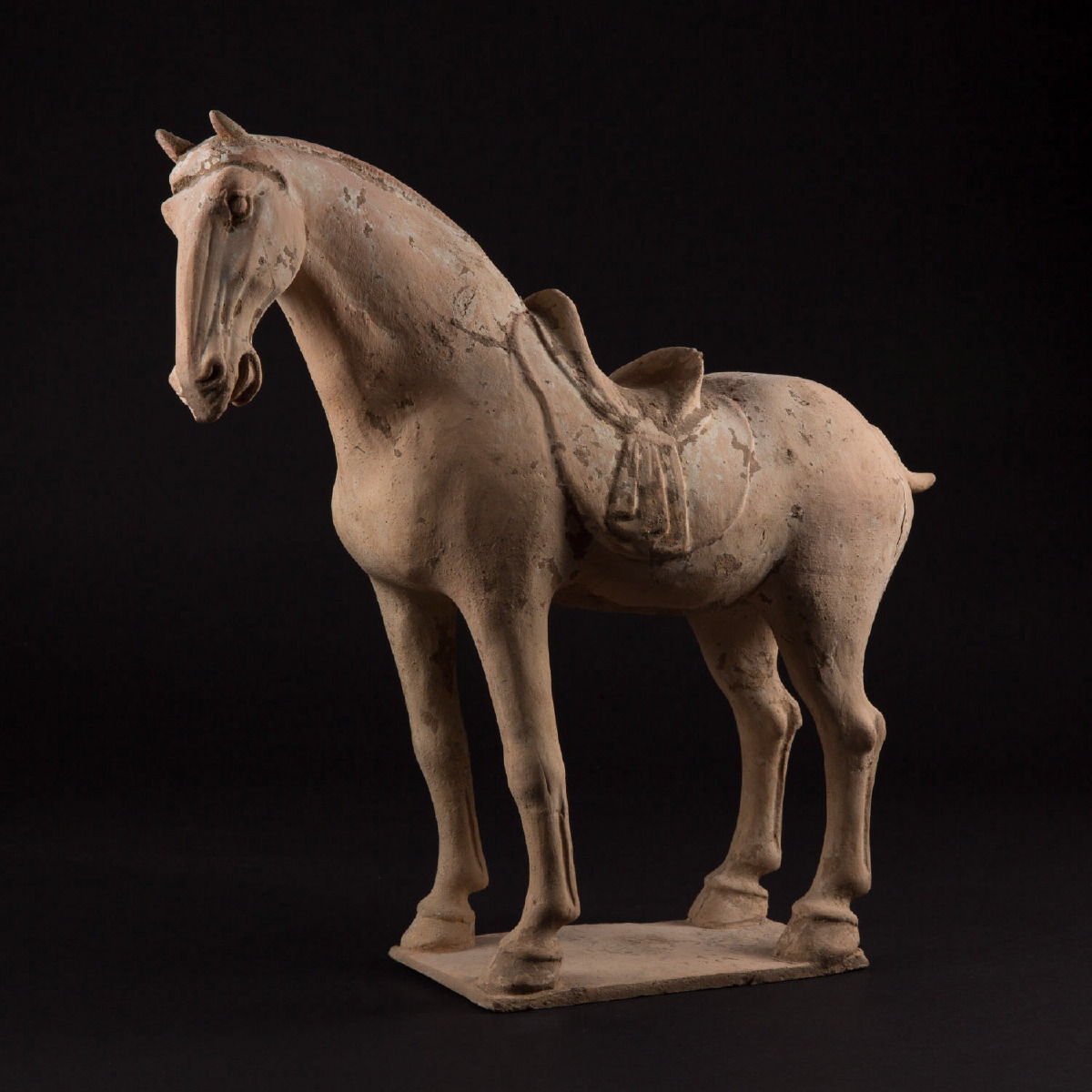 Photo of TANG HORSE ON A TERRACE