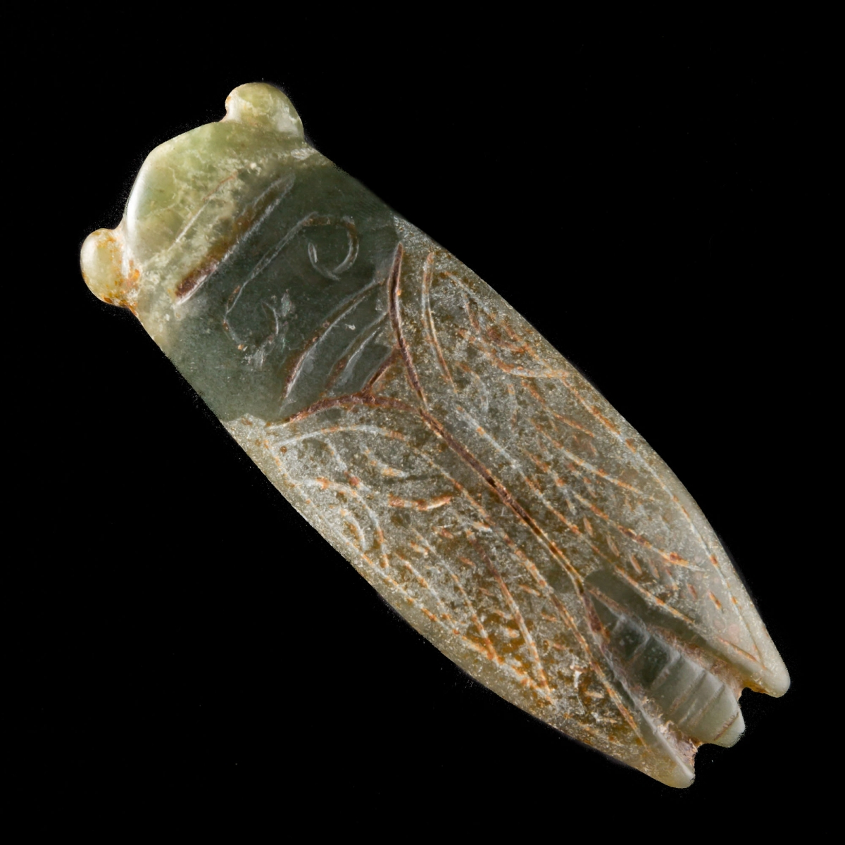 Photo of CICADA CHAN IN JADE NEPHRITE